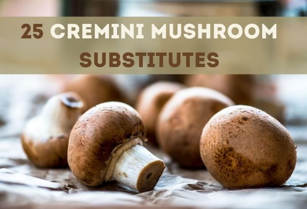 Cremini mushrooms substitute